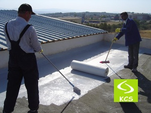 Roof Leakage Seepage Control Waterproofing Services